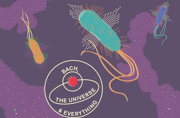 Bach, the Universe and Everything: Can Bacterium Compute?