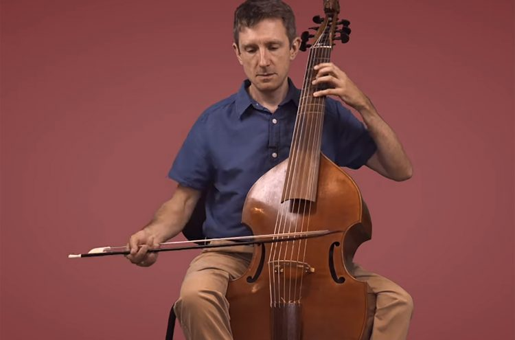 Introducing the Viola da Gamba